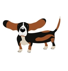 Dog basset hound vector