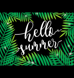 Hello summer beach palm with dark background vector