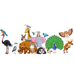 Wild animals standing in group vector image
