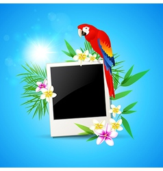 blue background with red parrot and photo vector image