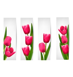 Set of banners with pink flower vector