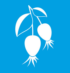 Dogrose berries branch icon white vector