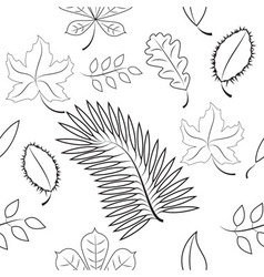 Seamless of different leaves contour plot vector