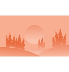 Silhouette of spruce in hill with fog vector image vector image