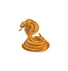 Cobra viper snake coiled drawing vector