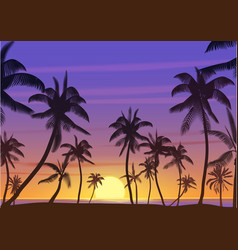 Palm coconut trees silhouette at sunset or sunrise vector