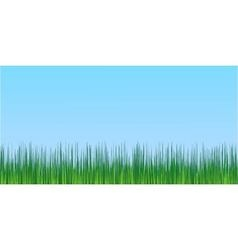 Juicy green grass blue sky background vector