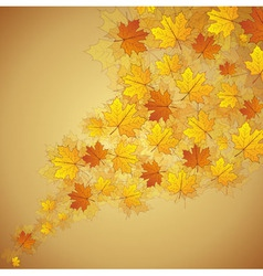 Autumn maple leaves stream vector