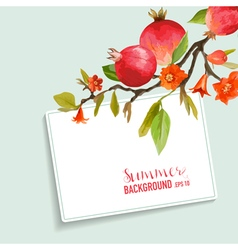 Pomegranate and flowers card fruit background vector