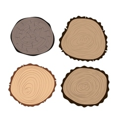 Tree slices isolated vector