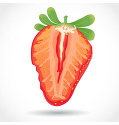 Fresh juicy piece of strawberry isolated on white vector image