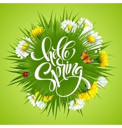 Inscription hello spring hand lettering on vector