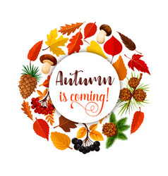 Autumn leaf poster for fall nature season design vector