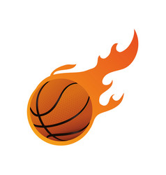 basketball ball game vector image
