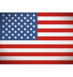 Flag of the United States America Independence vector image vector image