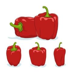 Red bell peppersweet pepper or capsicum vector