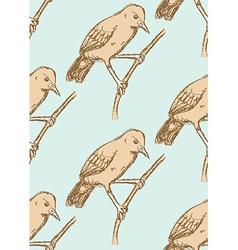 Sketch rufous hornero bird in vintage style vector