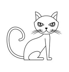 Cat animal icon vector