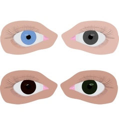 four different colour eyes vector image vector image