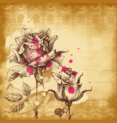 vintage roses background for invitations vector image vector image