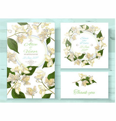 Jasmine invitations set vector