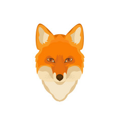 Orange fox head image wild animal wildlife vector