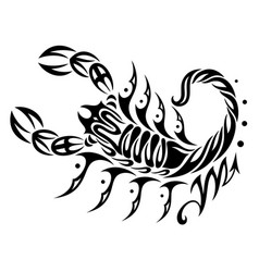 Zodiac sign scorpio vector