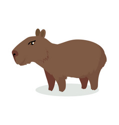 capybara cartoon icon in flat design vector image vector image