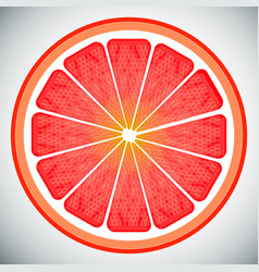 Piece of grapefruit high quality vector