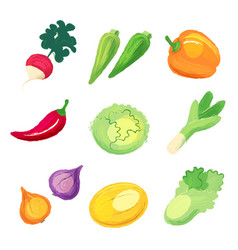 set of vegetables isolated on white background vector image vector image