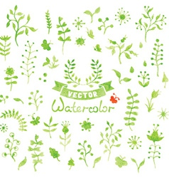 Set of watercolor nature elements vector image vector image
