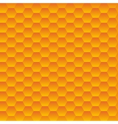 Seamless hexagonal cells texture vector
