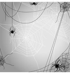 Background with spiders vector image vector image