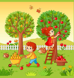 boy and girl collect fruit harvest vector image vector image