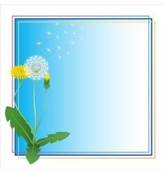 Dandelion Taraxacum Blowball Flower Blue Frame vector image vector image