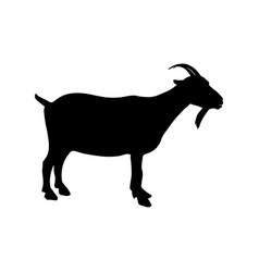 goat icon black silhouette vector image