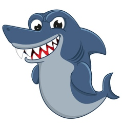 Cool shark cartoon vector