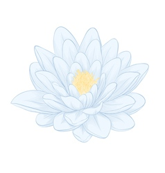 Lotus flower painted in graphic style isolated vector