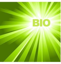 organic advertisement vector image