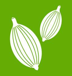 Cardamom pods icon green vector