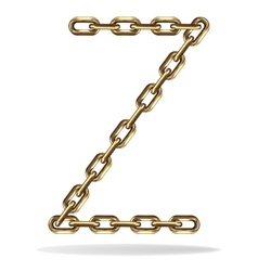 Golden Letter Z vector image vector image