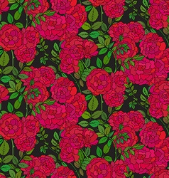 Seamless pattern with colorful bush roses vector image