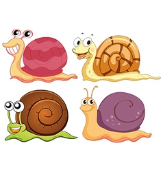 Four snails with different shells vector