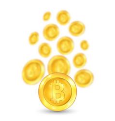 Bitcoin bit coin digital currency vector