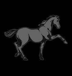 black horse hand drawn vector image