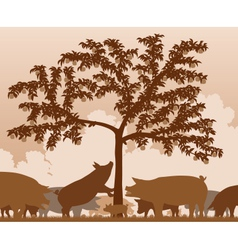 Foraging pigs vector