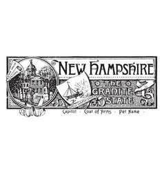 The state banner of new hampshire the granite vector