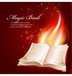 a magical book vector image