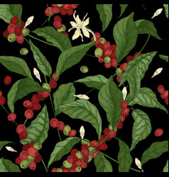 Beautiful seamless pattern with coffea or coffee vector