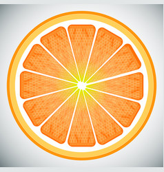 Piece of orange high quality vector